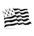 flag brittany france waving on wind vector image