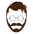 isolated hipsterman avatar vector image