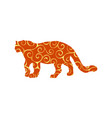leopard wildcat color silhouette animal vector image