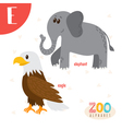 Letter E Cute animals Funny cartoon animals in vector image vector image