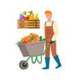 man harvesting transporting pumpkins on carriage vector image vector image