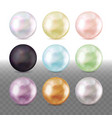 realistic pearls different colors vector image vector image