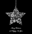 Star from snowflakes vector image