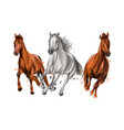 three horses run gallop from splash watercolors vector image vector image