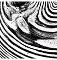 Wooden Diagonal Texture vector image vector image