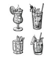 alcohol cocktail hand drawn set vector image vector image