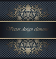 background with lace ornament and place for text vector image