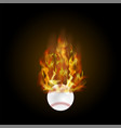 burning baseball ball with fire flame vector image vector image