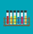 flat multicolor test tubes liquid in rack vector image