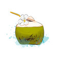 fresh coconut tropical cocktail with straws from vector image