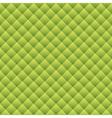 Green snake skin vector image