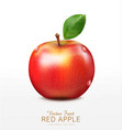 ruddy apple with green leaf isolated vector image