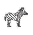 safari animals design vector image vector image
