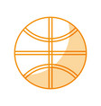 basket ball isolated vector image