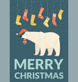christmas card template with funny bear vector image