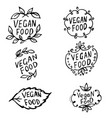 doodle icons for vegan food vector image vector image