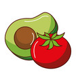 fresh avocado with tomato vector image