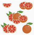 grapefruit citrus fruit vector image vector image