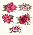 set pink flowers in detailed and realistic style vector image
