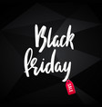 black friday advertising banner design discount vector image