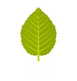 hazel leaf icon flat style vector image vector image