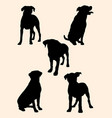 rottweiler dog silhouette 01 vector image vector image