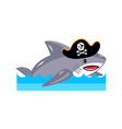 shark in pirate hat icon vector image vector image