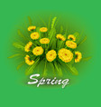 springtime on background with vector image