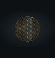 flower of life gold sacred spiritual mandala icon vector image vector image