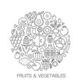 fruits vegetables food in circle - concept line vector image vector image