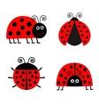 Ladybug Ladybird icon set Baby background Funny vector image vector image