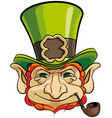 leprechauns head vector image
