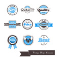 Set of nine blue vintage labels vector image