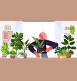woman planting houseplants in pot housewife caring vector image vector image