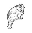 chicken leg sketch engraving vector image