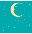 crescent and star vector image vector image