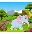 funny elephant in the jungle vector image vector image