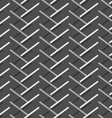 Monochrome pattern with diagonal gray doubled vector image vector image