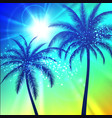 summer background with palm silhouettes vector image vector image