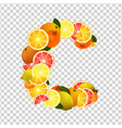 vitamin c lettering vector image vector image