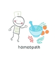 homeopath medicine prepared from plants vector image