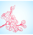 Background with red sakura flowers vector