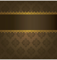 Ornate border with background vector image vector image