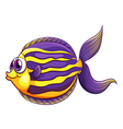 A colorful round fish vector image vector image