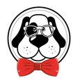 nice hipster dog glasses bow vector image
