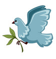 white dove or pigeon with olive branch isolated vector image vector image