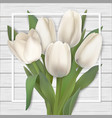 white tulips and frame on wooden background vector image vector image