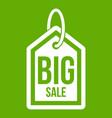 big sale tag icon green vector image vector image
