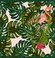 flamingo with tropical flowers seamless pattern vector image vector image