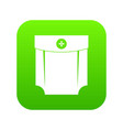 pocket design icon digital green vector image vector image